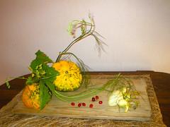 morimono vegetariano (Ikebana Marisa) Tags: ikebana morimono oharaschool