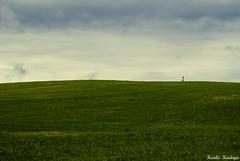 Up! (KadKarlis) Tags: mountain green grass contrast climb photo nikon skies view hill landmarks places latvia edge land waters visiting steep piebalga d3000 jaunpiebalga