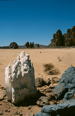 Rocks painted by Jean Vrame, Bardai (michael_jeddah) Tags: chad modernart tibesti bardai jeanvrame