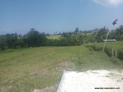 land for sale near seseh beach bali indonesia (franky_ok2) Tags: bali beach indonesia near free agency buy land hold reservation kuta seseh