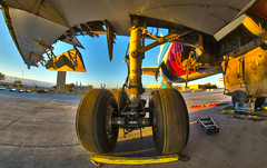 Landing Gear (Pacific Aerospace Resources & Technologies) Tags: all interior aircraft engine gear landing return maintenance airbus series service boeing douglas removal modification lockheed aging install a320 b747 md11 l1011 dc10 mcdonnell dc9 dc8 b707 b737 a300 b767 installs b757 b727 md80 b777 a310 modifications b717