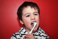 {Julian 365} Day 228 - serious work (citygirlny10305) Tags: boy portrait toddler child stripes teeth flash documentary toothbrush redwall brushingteeth 365project canon5dmarkii
