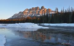 Castle Mountain sunrise, Banff National Park, Canada (Lijuan Guo Photography ( Hollow Bamboo)) Tags: winter mountain lake snow reflection castle ice nature sunrise river rockies canadian alberta banff