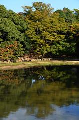 Nara Ukimido  Reflection  2 (pokoroto) Tags: autumn reflection japan october  nara kansai 2014 10 ukimido    naraprefecture  kannazuki   themonthwhentherearenogods 26