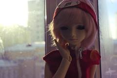 Renee (EnkoNyan) Tags: anime renee sakura bjd custom naruto dollmore haruno shippuuden