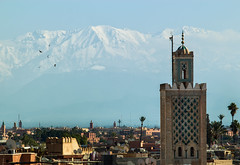 Winter in Marrakech (martijn.hermans) Tags: city travel snow mountains birds landscape mosque morocco atlas marrakech thisphotorocks