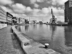P3091402 (lychee_vanilla) Tags: bw port harbour hafen mnster