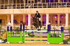 2015 CHI - Al Shaqab, Jumping (www.ziggywellens.com) Tags: horse jumping action event equine 2015 chialshaqab