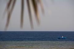 IMG_8049 (m.damert) Tags: ocean blue coast boat fishing fisherman redsea traditional horizon small egypt el lonely quseir