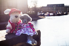 New (twinnieE) Tags: new cute love idea arthur canal couple stacey teddy fluffy theme doggy date sowerby sturdylegs twinniee