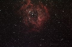rosette nebula (Themagster3) Tags: night nebula astrophotography astronomy nightsky rosette deepsky photosof caldwell49