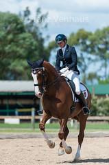 150314_Clarendon_4.1_9483.jpg (FranzVenhaus) Tags: horses sydney australia riding newsouthwales athletes aus equestrian supporters riders officials dressage spectatorsvolunteers
