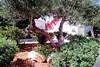 2 Bedroom Estate Villa - Paros #19
