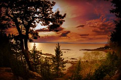 Exotic Sunset (camillefalardeau) Tags: trees sunset canada colorful quebec couchdesoleil stlawrenceriver fleuvestlaurent