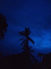 Night (Esteban 507) Tags: nightphotography sunset naturaleza nature beautiful beauty night noche gloom nightphoto panam esteban preety oscuridad oscuro penumbra naturelover 507