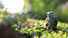 Surveying (Kyle Hardisty) Tags: lighting autumn 3 macro brick field canon kyle lens photography rebel arms lego fig disneyland pillar halo mini disney reach pancake 40mm custom tomorrowland depth f28 sl1 spartan minifigure 2016 toyphotography brickarms odst brickforge hardisty