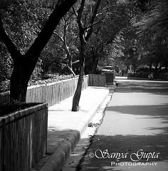 Unknown Paths...... (sanyagupta09) Tags: travel blackandwhite bw beautiful explore paths discover blackandwhitephotography photooftheday bestshot