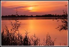 L'heure magique ! (Les photos de LN) Tags: sunset lumire couleurs beaut garonne reflets fleuve nuances srnit aqutaine