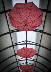 flying umbrellas (Tomsch) Tags: roof red rot umbrella innenhof umbrellas dach regenschirme krems schirme regenschirm schirm loweraustria niederosterreich
