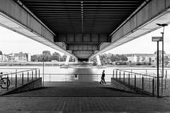 severinsbrcke (margaretsdad) Tags: city uk blackandwhite bw white black river germany scott scotland edinburgh bridges cologne rhine koln barron midlothian rheinauhafen d7100 scottbarron severinsbrucke