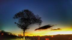 eternal idols (Rodrigo Alceu Dispor) Tags: sky tree idol fx eternal