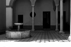 alcazar... (piera tedde) Tags: monochrome monocromo sevilla andalucia alcazar andalusia viaggio architettura biancoenero spagna siviglia