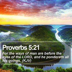 Daily Bible Verse - Proverbs 5:21 (daily-bible-verse) Tags: nature ministry scriptures disciple youthministry godisgood