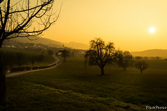 19032016 - Suisse - 009.jpg (Pitch Photo) Tags: paysage suissemade heuredor