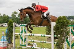 DSC02357_s (AndiP66) Tags: concourshippique springen thörigen 2016 11juni2016 juni pferd horse schweiz switzerland kantonbern cantonberne concours wettbewerb horsejumping equestrian sports springreiten pferdespringen pferdesport sport sony sonyalpha 77markii 77ii 77m2 a77ii alpha ilca77m2 slta77ii sony70400mm f456 sony70400mmf456gssmii sal70400g2 andreaspeters bern ch