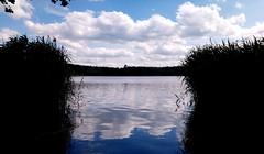 Lake reflections (General Photography) Tags: reflection reflections lake pond water sky clouds fluid