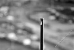 Tokina Tele-Auto 200mm f/3.5 (sample-image.com) Tags: pictures auto old test classic film analog lens prime image kodak picture pic cx images scan retro d76 tokina xray m42 sample tele mf 135 agfa manualfocus cx2 chinon sampleimage f35 200mm screwmount kodakd76 plustek 135film samplepicture cxii cinerex opticfilm teleauto xrayfilm chinoncxii plustekopticfilm7600i 7600i agfacinerex tokinateleauto200mmf35