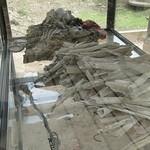 Bones of victims in Choeung Ek Genocidal Center Phnom Penh thumbnail