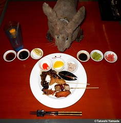 Dr. Takeshi Yamada and Seara (Coney Island Sea Rabbit) at Ichiumi Japanese buffet restaurant in Manhattan, NY on June 30, 2016.  20160630Thu DSCN7191=p3030CC. masago, takuan, crab salad. teriyaki beef, oden, grilled mussel, baked tuna & fish, chicken wing (searabbits23) Tags: ny newyork sexy celebrity art hat fashion animal brooklyn asian coneyisland japanese star tv google king artist dragon god vampire famous gothic goth uma ufo pop taxidermy vogue cnn tuxedo bikini tophat unitednations playboy entertainer oddities genius donaldtrump mermaid amc mardigras salvadordali performer unicorn billclinton hillaryclinton billgates aol vangogh curiosities sideshow jeffkoons globalwarming mart magician takashimurakami pablopicasso steampunk damienhirst cryptozoology freakshow leonardodavinci seara immortalized takeshiyamada roguetaxidermy searabbit barrackobama ladygaga climategate
