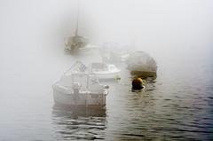 le Dellec s'veille (Harald Dugenet.) Tags: port bretagne bateau brouillard brume goulet atlantique boue coffre plouzan merdiroise radedebrest dellec portdudellec