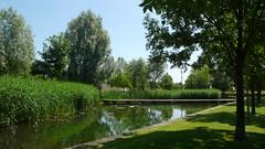 Rouen - Le parc Grammont - Etang (jeanlouisallix) Tags: park panorama france nature seine garden eau jardin lac arbres rouen maritime normandie parc paysages haute étang lanscapes grammont ajonc