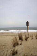 At The Beach (Rich Renomeron) Tags: beach bethanybeach olympusomdem10 olympusmzuiko1442mmf3556ez