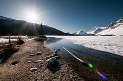Bow Lake coma (Thankful!) Tags: lake snow ice frozen lensflare banff banffnationalpark sunstar bowlake partlyfrozen