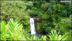 Jurassic Falls(1) (NatePhotos) Tags: road sunset sea hawaii bay waterfall rainbow cows turtle maui hana jungle waterfalls kapalua rooster eel napili 2016 natephotos