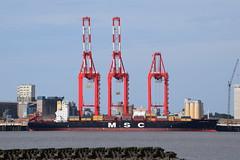 MSC Nederland (Gareth Garbutt) Tags: rivermersey liverpool2 mscnederland