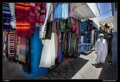 Callejeando (meggiecaminos) Tags: street blue man shop azul cat calle strada streetphotography uomo tienda morocco gato negozio marocco medina marruecos gatto hombre urbanlandscape asilah fotografaurbana