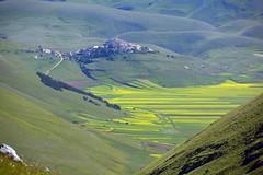 Castelluccio di Norcia (giorgiorodano46) Tags: mountain verde green june landscape nikon village pueblo montagna norcia castelluccio 2016 sibillini montisibillininationalpark giorgiorodano giugno2016