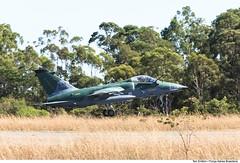 A-1M da Força Aérea Brasileira (Força Aérea Brasileira - Página Oficial) Tags: amx a1m baan decolagem forçaaéreabrasileira brazilianairforce modernizado fotoeniltonkirchhof aviacaodecaca