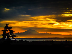 Dawn of Uncertainty (Colormaniac too) Tags: sky tree clouds sunrise landscape dawn colorful faith olympicpeninsula sequim pacificnorthwest washingtonstate daybreak uncertainty seimphotoalchemist