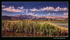 La marjal de Pego (Pego's marsh) (Rafel Ferrandis) Tags: pego marjal lamarina hdr eos5dmkii ef1635mmf4l