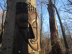 Buddha of the woods 2, Druid Hill Park (Zombie37) Tags: wood city blue trees urban brown tree art nature face forest garden outside outdoors woods place natural buddha bare branches maryland baltimore carving hidden serenity surprise trunk serene panels sights closedeyes druidhill druidhillpark woodonwood