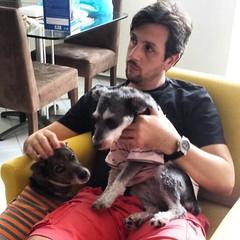 Tentando assistir um filme. #pet #dogs #instapet #sonodengo #dengo #cachorroderua #srd (NelsonBritoJr) Tags: ifttt instagram nelson brito jr | fotografia pet cachorro co srd companheiro