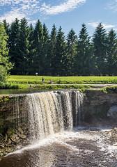 Jgala juga (Jgala waterfall), at Koogi, Jelhtme DSC_0595 (troy david johnston) Tags: trees summer water stone pine river landscape waterfall estonia outdoor eesti jelhtme troydavidjohnston koogi