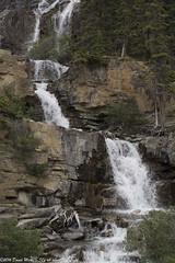 Tangle Creek falls (David Minty) Tags: waterfall landform