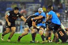 Dueling captains (DanielSalvatori) Tags: jaguaresarg superrugby bulls icbc jaguares rugby sports uar ciudadautonomadebuenosaires provinciadebuenosaires argentina arg