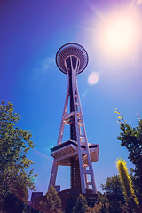 Space Needle ((Sarah Robinson)) Tags: seattle washington glass garden trees sky sun lens flare nikon d750 20mm wide angle blue yellow tall building structure space needle perspective below